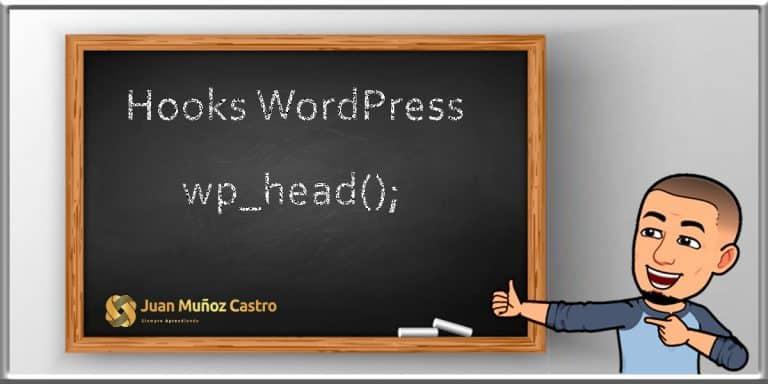 Wordpress Hooks - wp_head